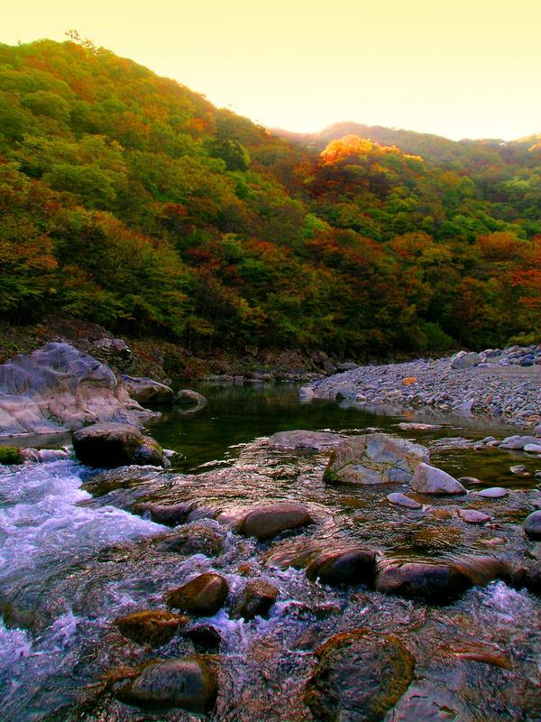 10白岩河原行き.JPG