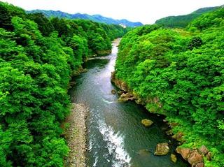 15 鬼怒楯岩大吊橋から日光方面見る.jpg