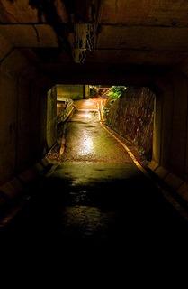 19 古釜沢のトンネル.JPG