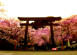 23.護国神社 小.jpg