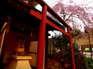 24.稲荷神社 小.jpg