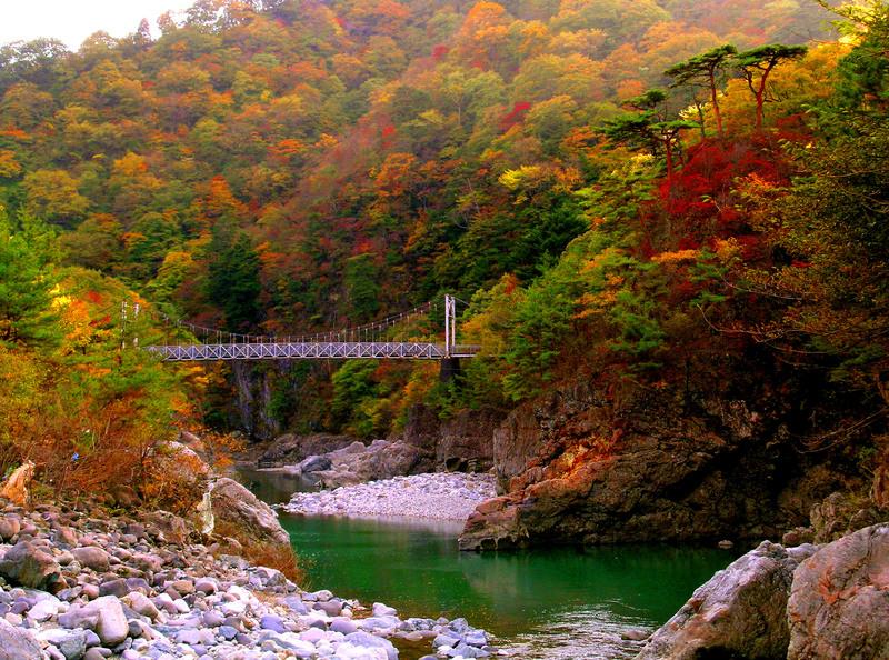 29浜子橋を沢より.JPG
