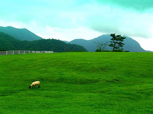 4.こやぎの丘 イメージ.JPG