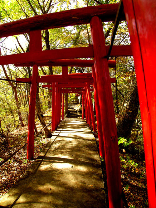 51温泉神社参道s.jpg
