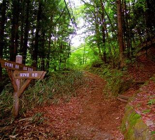55 平方山散策路.JPG
