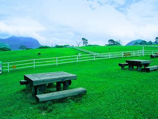 9.こやぎの丘 全景.JPG
