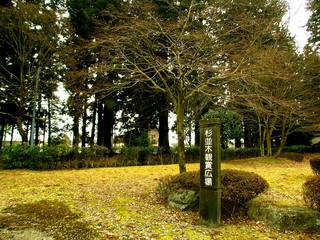 杉並木公園DSCN6834.JPG