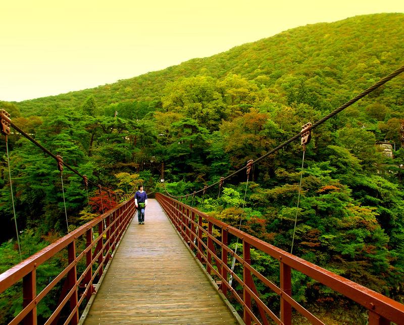 08滝見橋01.JPG