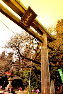 1.瀧尾神社 大木鳥居s.jpg