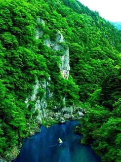 12 鬼怒楯岩大吊橋から楯岩見る.jpg