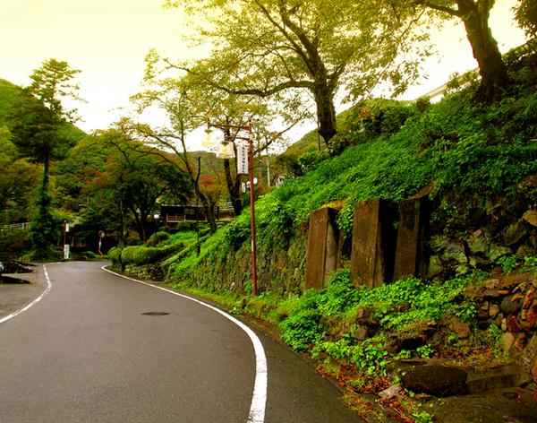 14滝見橋07花見坂s.jpg