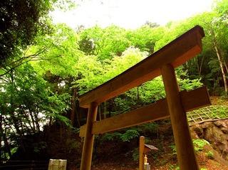 30 楯岩鬼怒姫神社鳥居.JPG