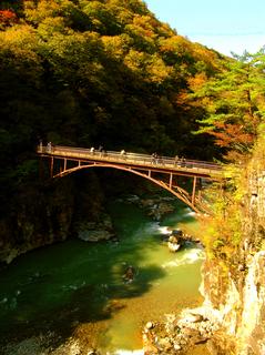 37 虹見橋 紅葉 s.jpg