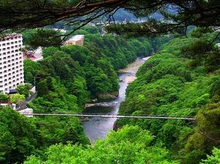 37 楯岩展望台より大吊橋を望む.JPG