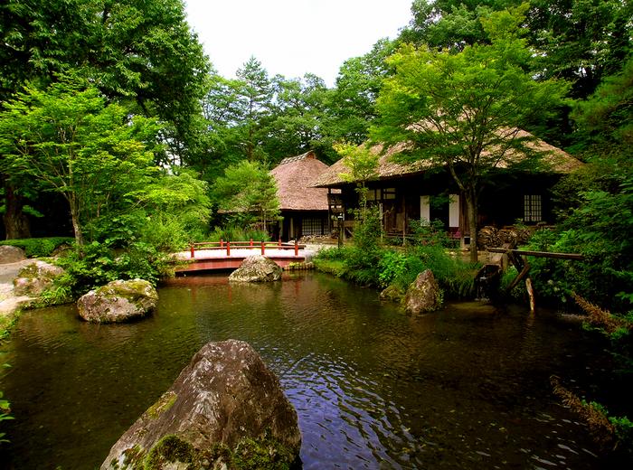 48平家の里 池景色.JPG