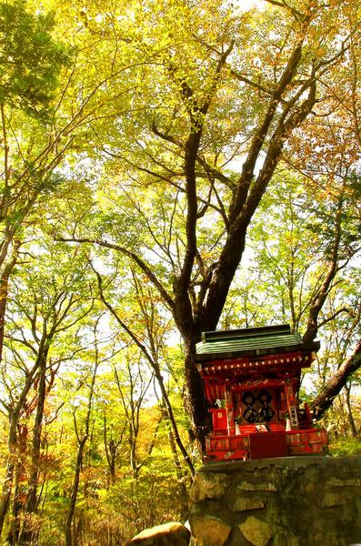 52温泉神社.JPG