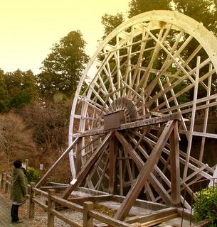 6.杉並木公園 大水車s.jpg
